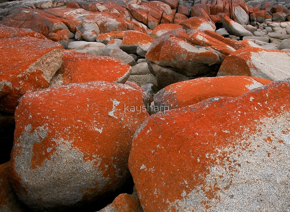 Colours and Shapes, Binalong Bay, Tasmania, Australia. by kaysharp