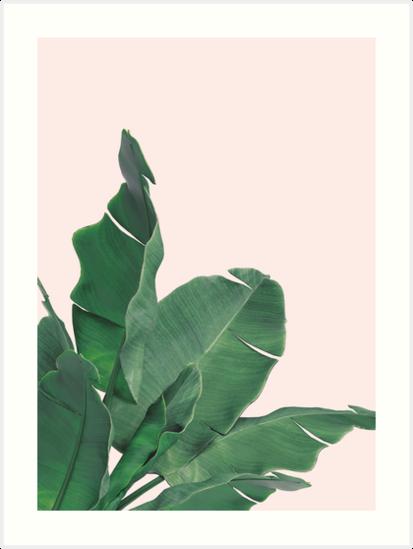 banana leaves tropical leaf art prints by natalie digital cloud