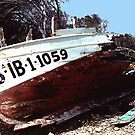Boat wreck. by naranzaria