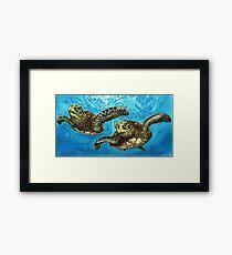 Meeresschildkröten Gerahmtes Wandbild