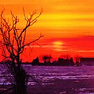Winter Sunset Illusions  by lorilee
