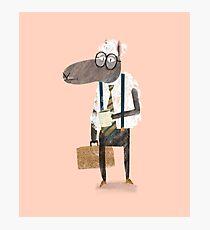 Corporate Sheep Photographic Print