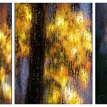 Rainy Day Blues Triptych by reilly58