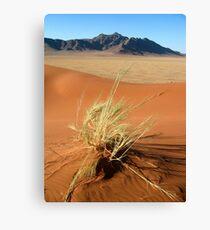 The Namib - Namibia Canvas Print