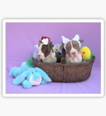 Easter Puppies Sticker