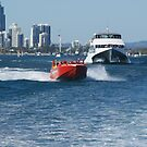 Greetings from the Gold Coast Australia by Auntymazza