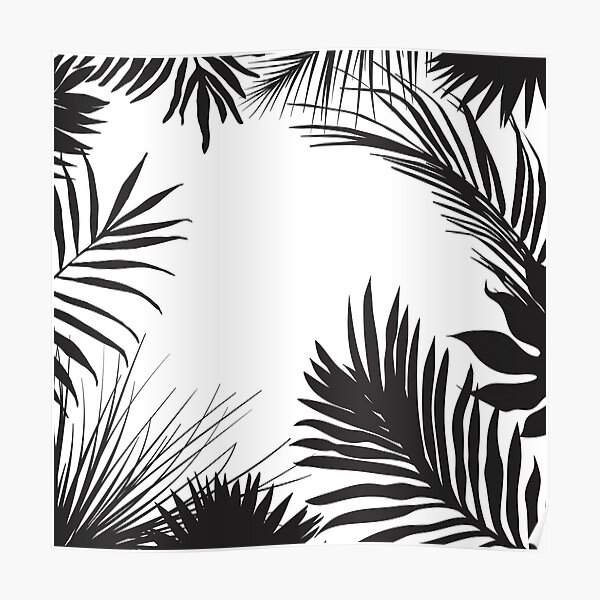 Palm Leaves In Black And White Poster