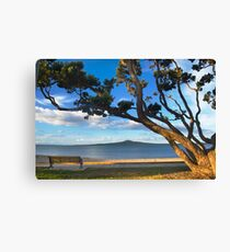 Rangitoto Canvas Print