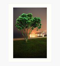 Oriental Bay Tree Art Print