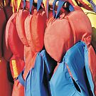 Colorful Rows by Diane Petker