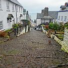 Clovelly High Street, Devon, England by trish725