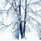 It's snowing by Imi Koetz