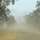 Dust Storm by GailD