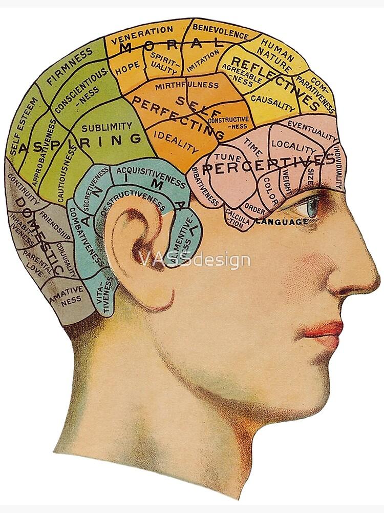 Phrenology Head Chart Vintage Anatomy Phrenology Poster
