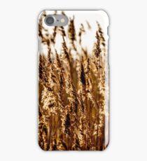 BackLit iPhone Case/Skin