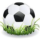 Fußball mit Gras von AnnArtshock