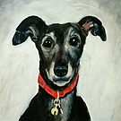 Mary the Gentle Greyhound by Hannah Dosanjh