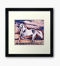 The American Paint Horse  Framed Print