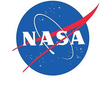 NASA Insignia 1958 by martynesmerch