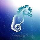 Seahorse by Bret Taylor