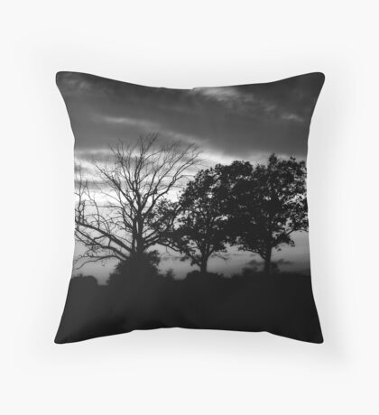 Sunset Black&White Throw Pillow