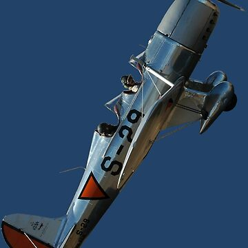 Plane & Simple - Ryan STM VH-AGW  by muz2142