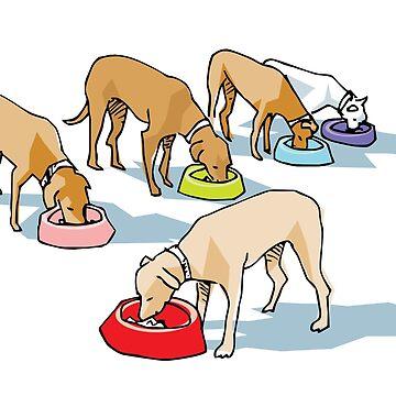 Trinidad dogs by mmawson