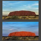 Uluru Sunset  by Werner Padarin