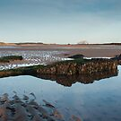 Tyninghame Beach, East Lothian by beakydave