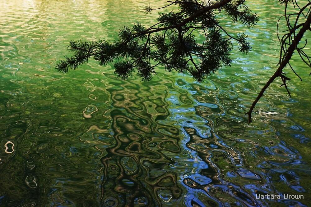 Green Water Patterns by Barbara  Brown