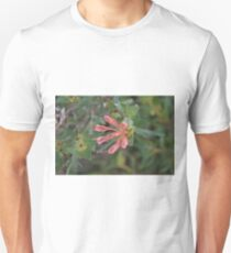 Kings Park Grevillea Unisex T-Shirt