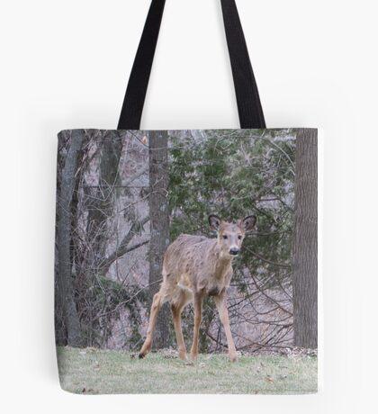 Okauchee Lake Deer Tote Bag