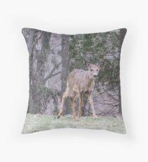 Okauchee Lake Deer Throw Pillow