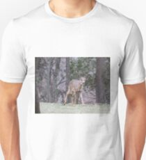 Okauchee Lake Deer Unisex T-Shirt