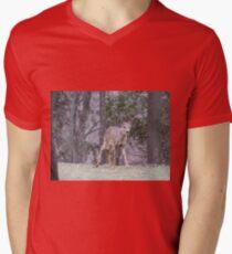 Okauchee Lake Deer Mens V-Neck T-Shirt