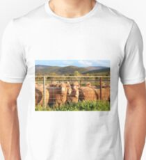 Early morning at the shearing pens Unisex T-Shirt