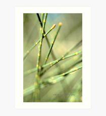 Green Tangle © Art Print