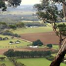 Scenic view from Mt.Buninyong by cjcphotography