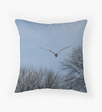 Seagull Over Trees Throw Pillow