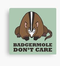 Badgermole Don't Care Canvas Print