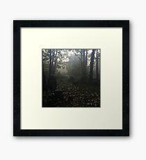 Misty graveyard Framed Print