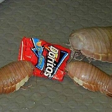 Real Isopod Hours by vanobras
