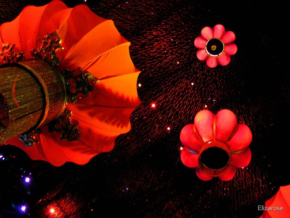 Chinese Lanterns by Elizarose