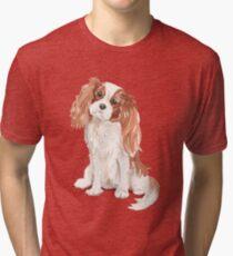 Cavalier King Charles Spaniel Tri-blend T-Shirt