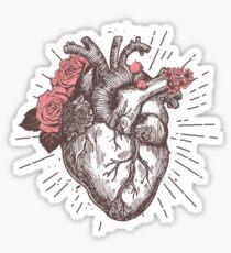 Anatomical Heart Floral Sticker