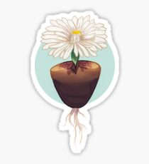 The Humble & Beautiful Lithops Plant Sticker