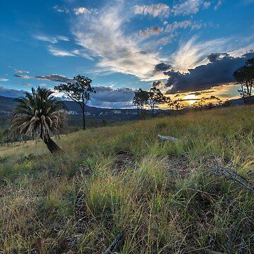 Sandstone Park - Caranarvon Gorge - Queensland by moronif