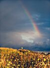 A Rainbow by Aaron Campbell