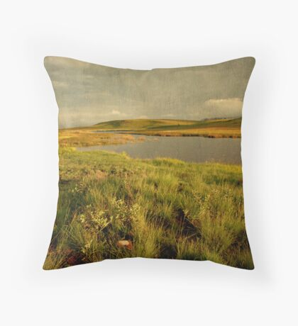 Drakensberg dam Throw Pillow