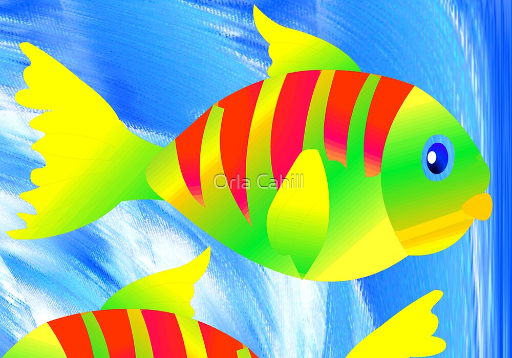 Fish by Orla Cahill
